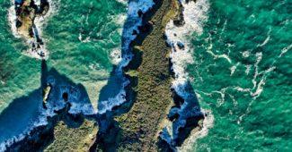 Collagène marin : origines, usages, bienfaits, précautions